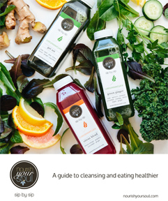 Nourish Your Soul Guide to Cleansing and Eating Healthy